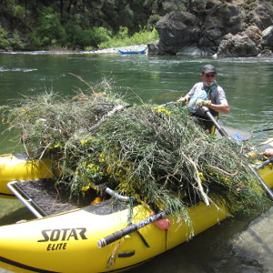 raft_and_restore
