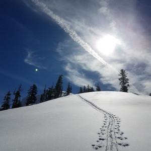 ski-tracks-2016